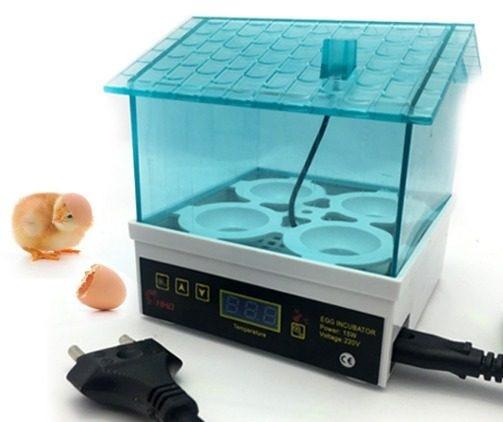 Маленький инкубатор на 4 яйца Алиэкспресс