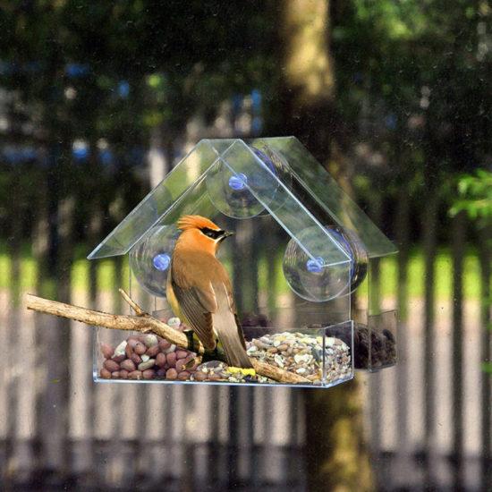 Прозрачная кормушка для птиц купить на алиэкспресс