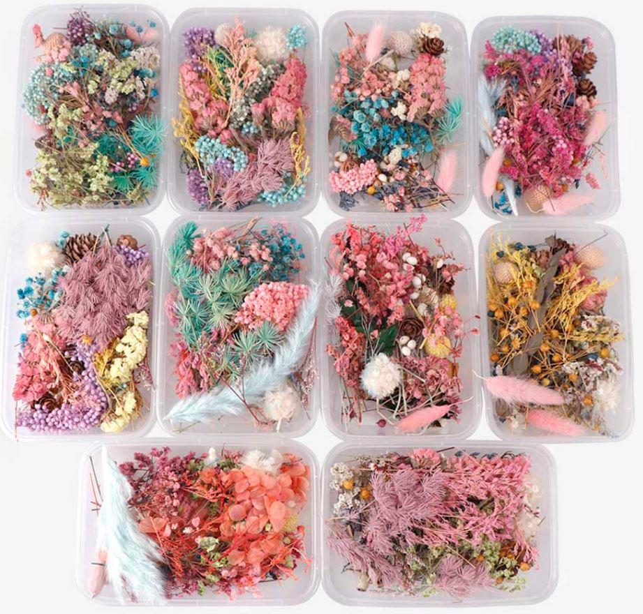 Сухоцветы для изготовления украшений