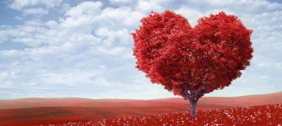 Что купить девушке на День cвятого Валентина на АлиЭкспресс