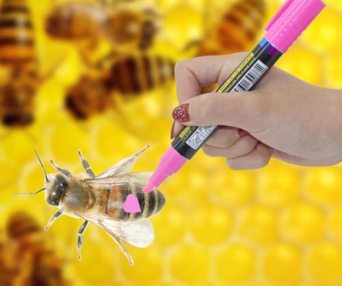 Оборудование для пчеловодства на Алиэкспресс