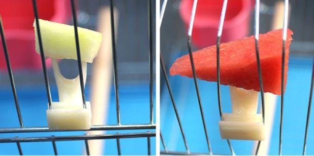 Пластиковый держатель еды для птиц Алиэкспресс